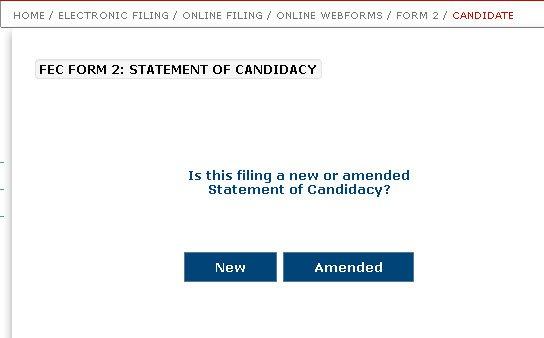 Webform Statement Candidacy Form 2.jpg