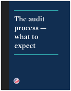 The audit process brochure